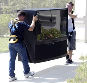 Moving Straps Furniture Lifting Move Virtually